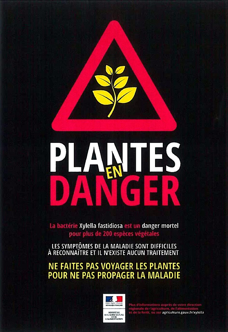Plantes en danger